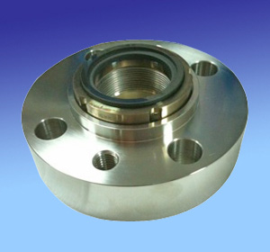 Stationary Bellows Seal with Gland HWGB