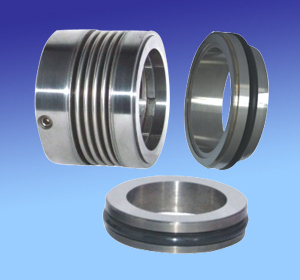 Low Temperature Rotating Bellows Seal